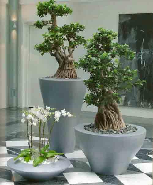 blumen wanger gartenbau floristik blumen wanger. Black Bedroom Furniture Sets. Home Design Ideas
